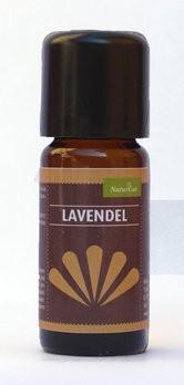 Duftöl Lavendel / Lavandula angustifolia