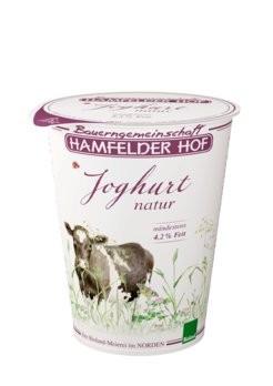 Joghurt natur Becher 4,2%