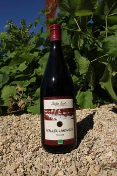 Landwein rot Weingut Kuntz , bio