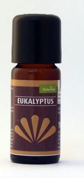 AROMARA Ätherisches Duftöl Eukalyptus Eukalyptusöl / Eucalyptus globulus